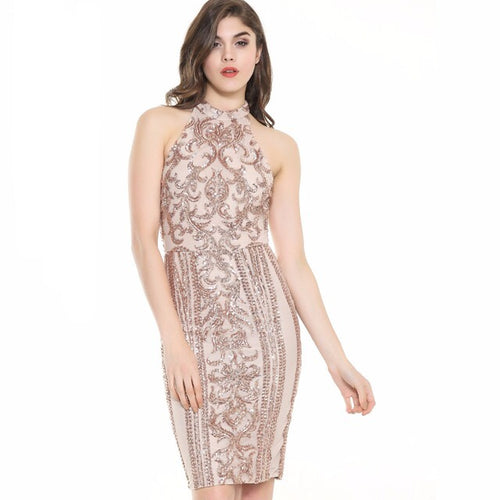 Livin' The Life Nude And Rose Gold Sequin Mini Dress - Fashion Genie Boutique USA Alt