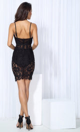 Quiney Black Lace Mesh Dress