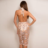 Simply Hot Nude & Gold Embellished Lace Midi Dress - Fashion Genie Boutique USA Alt