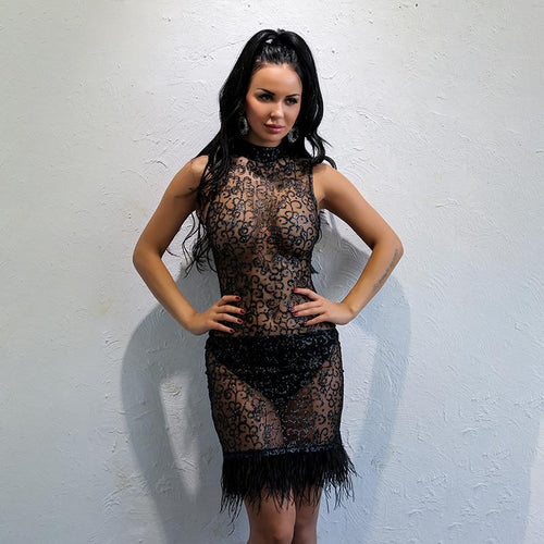 Right Now Black Mesh Glitter Embellished Feather Mini Dress - Fashion Genie Boutique