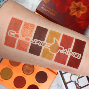 Coloured Raine - 6 Pan Stencil | Inspired by Coloured Raine