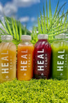 4 DAY CLEANSE - (16 JUICES)
