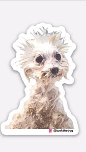 Tusk the Dog Sticker (Individual)