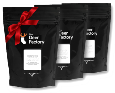 3 Month Sock Subscription Gift - TheDeerFactory