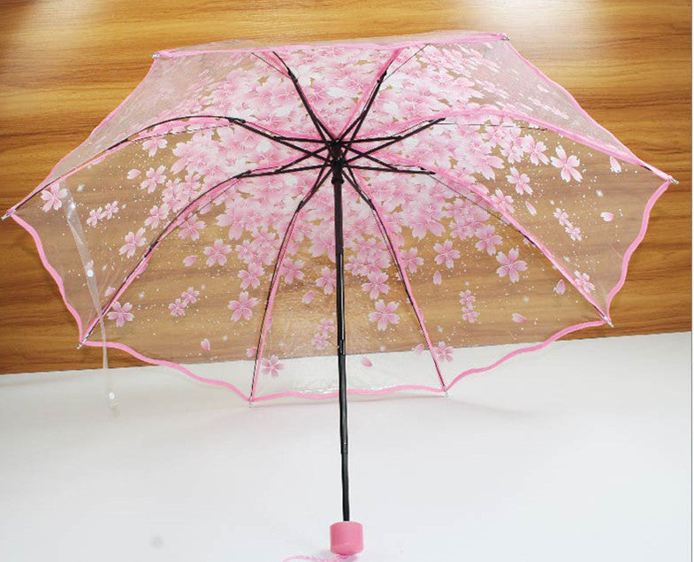 Sakura Umbrella