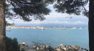 Through the trees to the old town of Antibes, South of France