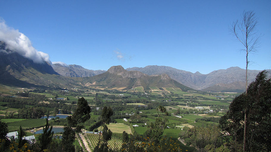 South Africa - the land of fabulous wine, breathtaking scenery & majestic animals