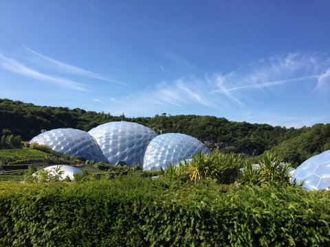 Eden Project during the day