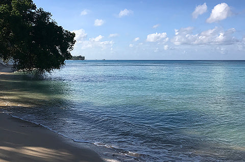 Warm Caribbean sea in Barbados