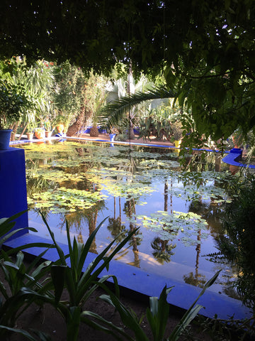 Garden pond inside the Jardin Majorelle