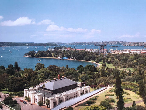 View over Botanical Gardens in Sydney