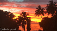 Spectacular sunset in Barbados - Taylor Benfield Luxury Scented Grapefruit & Orange Blossom Candle