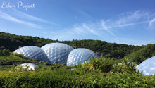 Eden Project in Cornwall - Taylor Benfield Luxury Scented Citrus & Lemongrass Candle