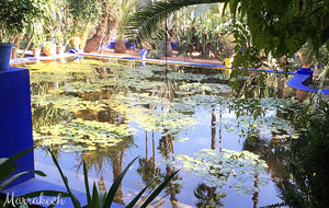 Beautiful pond in Jardin Majorelle - Taylor Benfield Luxury Scented Crimson Rose & Oud Candle