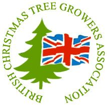 british christmas tree growers
