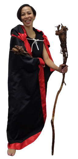 Earth Mage of Power set of Staff, Wand and Cloak by Powerpreneur
