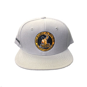 PFP Team Cap light-grey