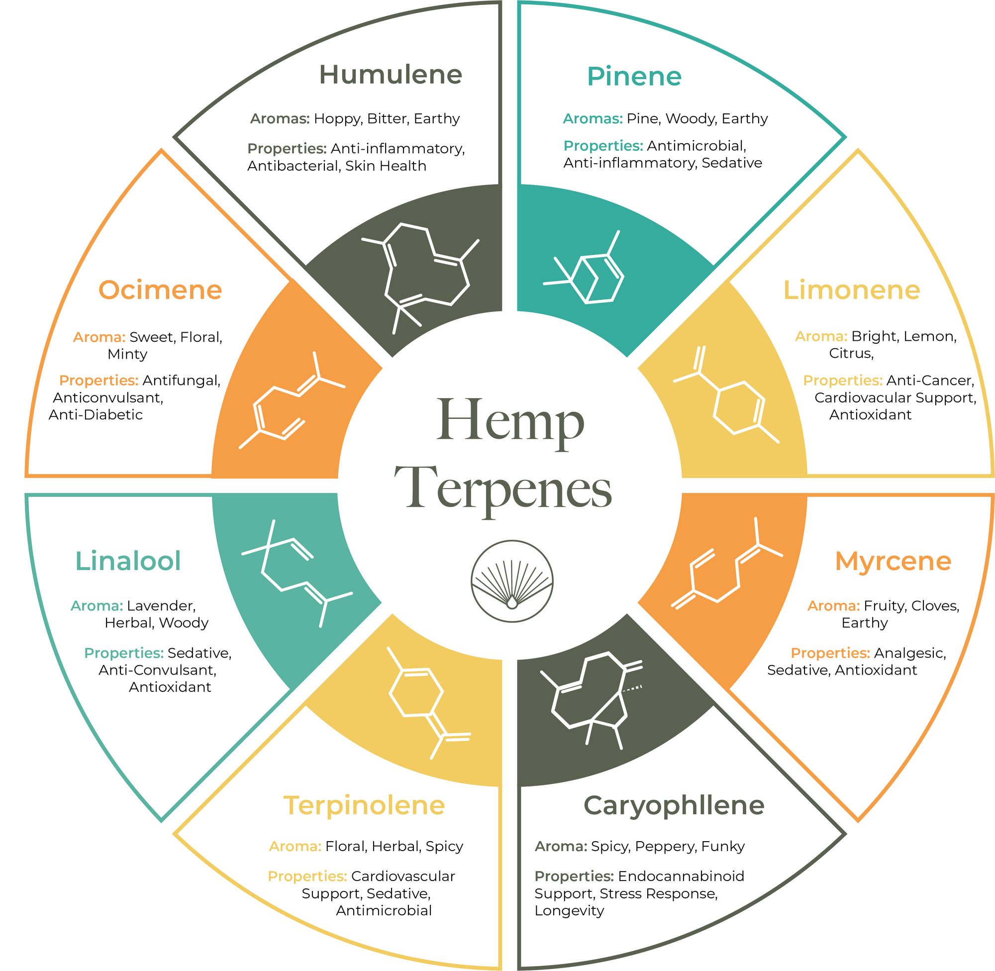 Therapeutic and Medicinal Uses of Terpenes
