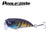 1Pcs Wobbler Crankbait 6Cm 6.7G Fishing Lures Plastic Hard Artificial Lure Perch-PROLEURRE FISHING Store-A-Bargain Bait Box