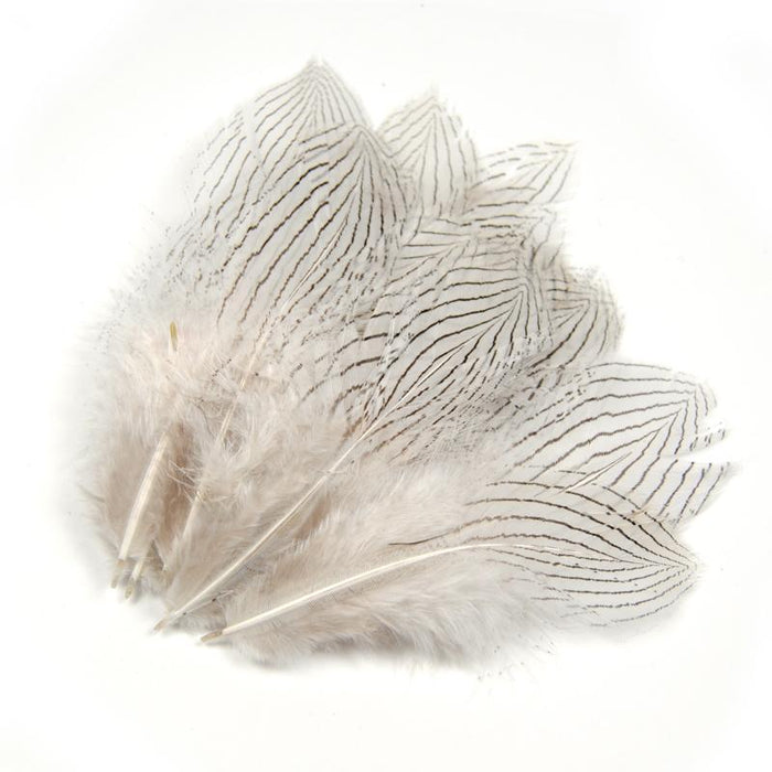 [20Pcs] Natural Color Stripe Feather For Fly Tying Wings, Body Feather Fishing-Fly Tying Materials-Bargain Bait Box-Bargain Bait Box