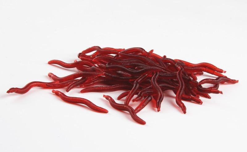 Anmuka 50Pcs 3.8Cm 0.2G Soft Lure Red Worms Earthworm Fishing Baits Trout-Anmuka Outdoor store-Bargain Bait Box