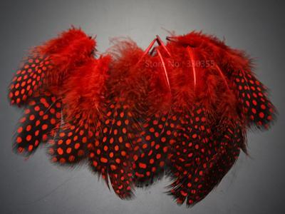 Guinea Hen Feather Saltwater Hackle Fly Tying Material Hand Selected Over 9 Cm-Fly Tying Materials-Bargain Bait Box-Red-Bargain Bait Box