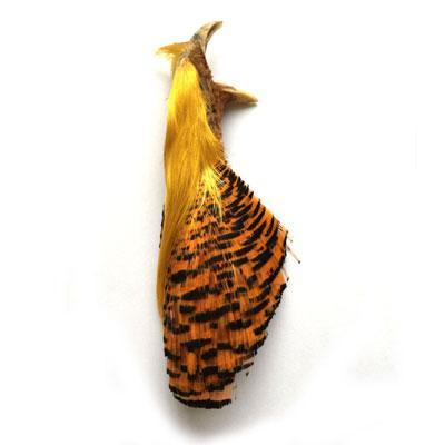 Natural Complete Golden Pheasant Head And Crest Fly Fishing Fly Tying Feather-Fly Tying Materials-Bargain Bait Box-Complete head-Bargain Bait Box