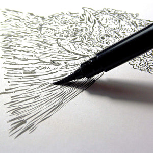 Pentel Arts Pocket Brush Pen, Includes 2 Black Ink Refills