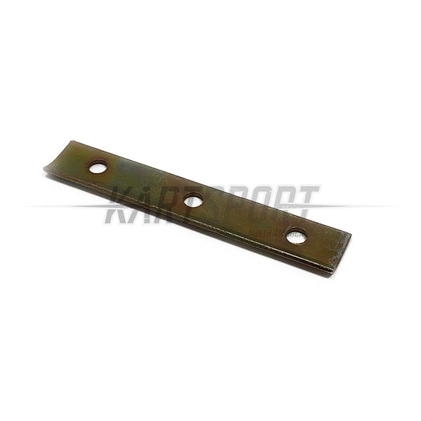 IZG-20200 Reed Petals Locking Plate
