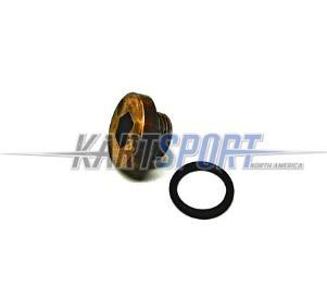 Briggs & Stratton LO206 555659 Carburetor Bowl Drain