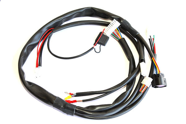 X30125935D-C Cables Harness '13