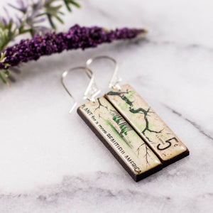 US- Beautification of America Postage Stamp Earrings