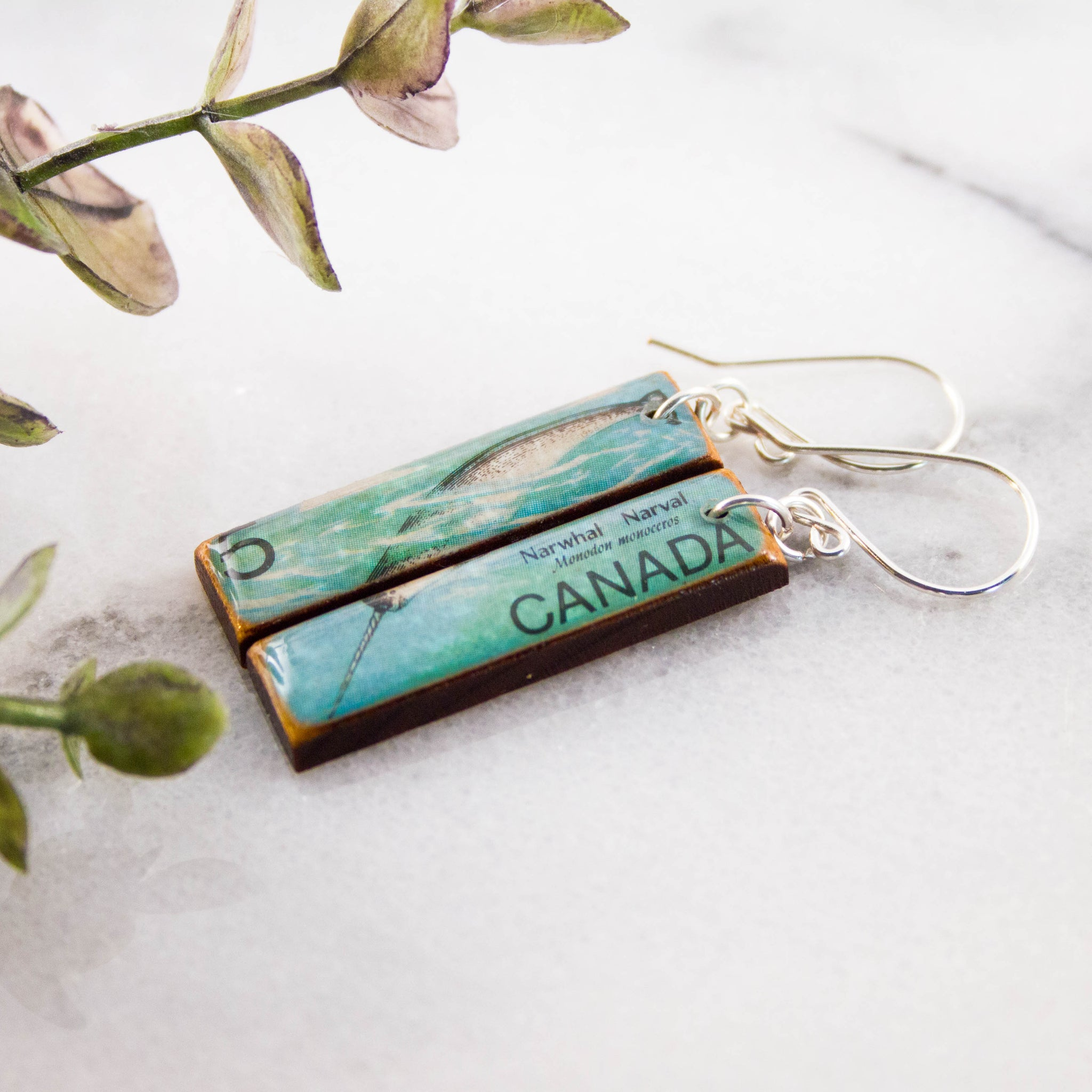 CANADA- Vintage Narwhal Postage Stamp Earrings