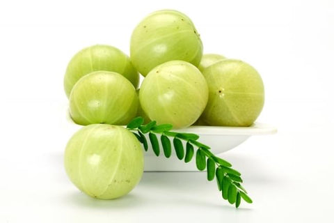 Image of Amla Hair Oil 100% Pure Essential Oil