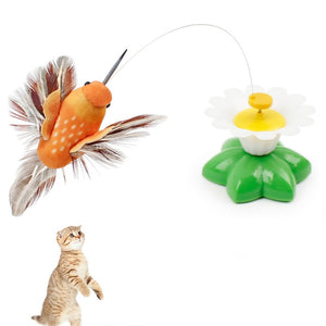 Electric 360 Rotating Colorful Dancing Bird Pattern Funny Cat Toys