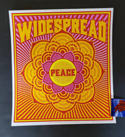 Chuck Sperry Widespread Panic Peace Art Print 2020