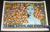 Chuck Sperry Widespread Panic Washington DC Poster Artist Edition 2019