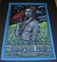 David Welker Widespread Panic Poster Jones Beach 2015 Artist Edition
