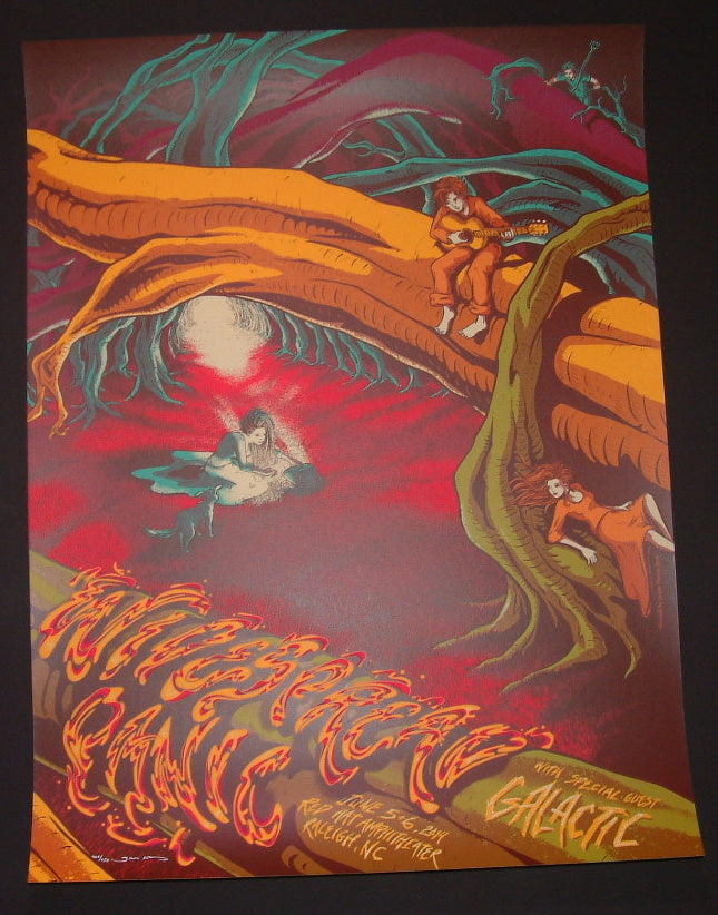 James Flames Widespread Panic Poster Raleigh 2014 Artist Edition