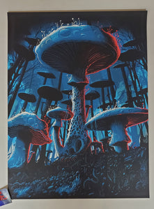 Paul Kreizenbeck Fungal Forest Art Print 2020