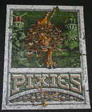 Dig My Chili Pixies Poster Asheville 2014 Artist Edition