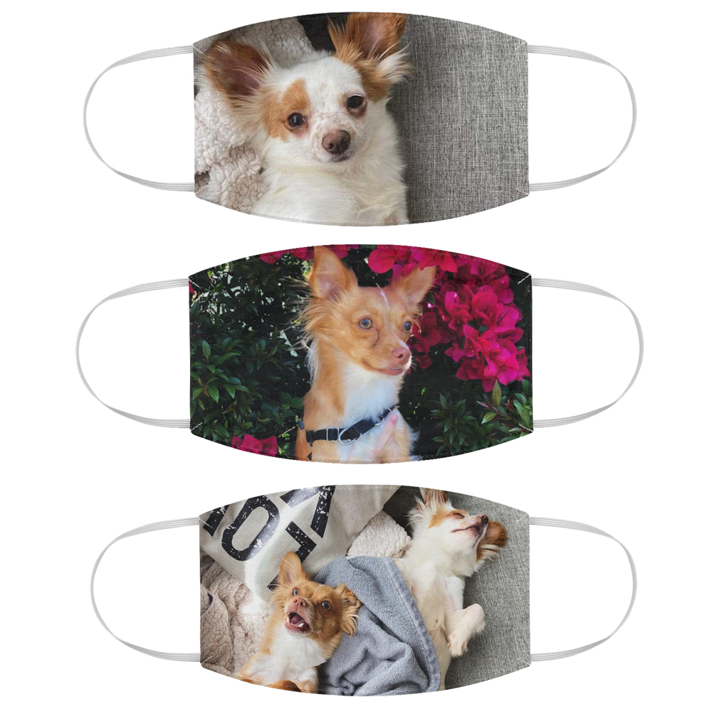 Personalized Pet Face Mask