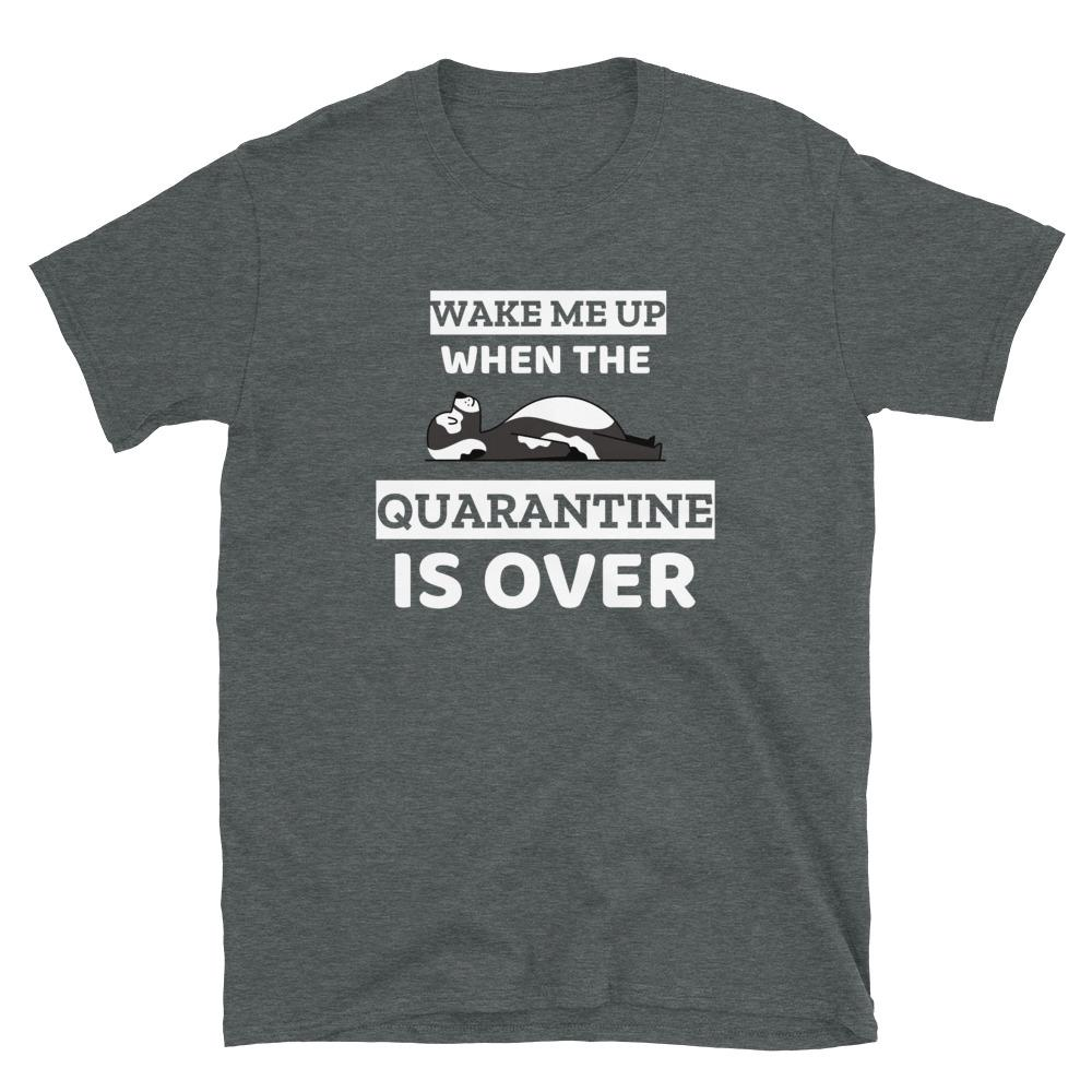 Wake Me Up When The Quarantine Is Over T-Shirt