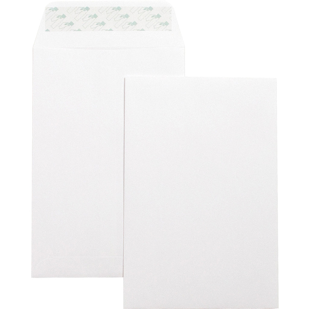 Business Source Self Seal 6inx9in Catalog Envelopes 6x9 100PK