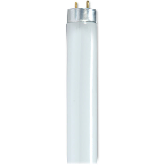 Satco 32 watt 48in T8 Fluorescent Bulbs