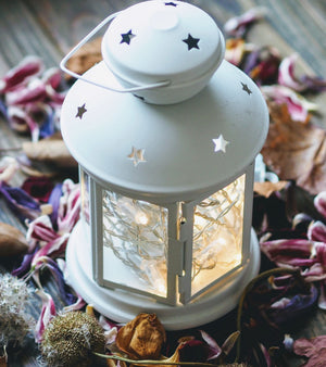 Metal Star Lantern w/Pine - Set of 2