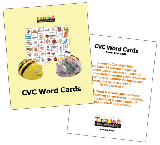 Bee & Blue Bot Word Cards
