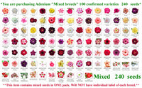 "1.You are purchasing Adenium ""Mixed breeds"" 100 confirmed varieties seeds"
