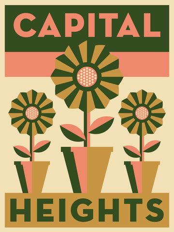 Capital Heights Neighborhood Poster