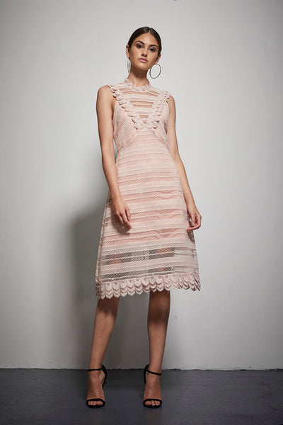 EXOTIC PANEL LACE MIDI DRESS